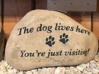 Pre-Carved Dog Lives Here - Product Image